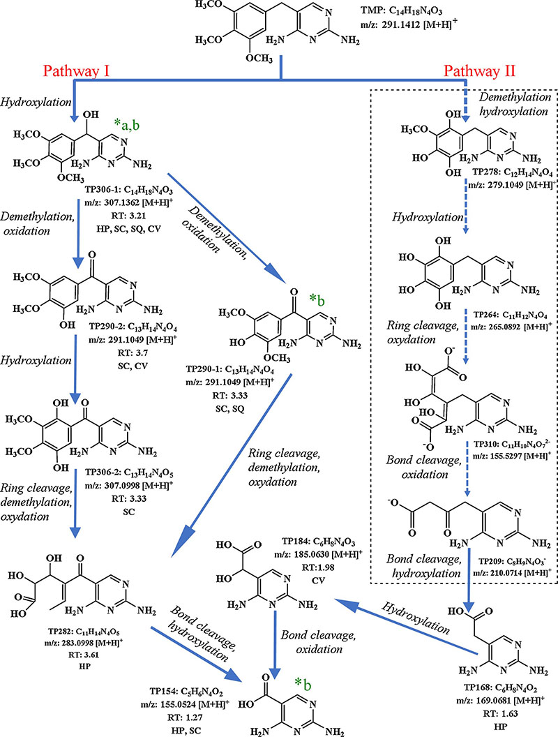 Potential transformation products and degradation pathways of microalgae degrading trimethoprim