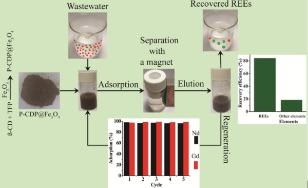 P-CDP@Fe3O4 And its application in recovering rare earth from waste water